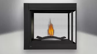 Ascent Multi-View SeeThru Peninsula Fireplace