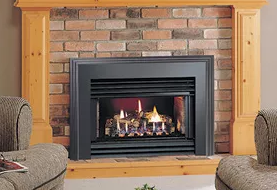 Hotshot DHS Fireplace Insert