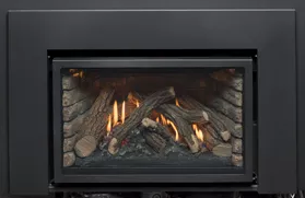 I-Series Fireplace Inserts