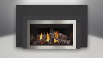 Inspiration GDIZC Fireplace Insert