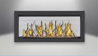 Vector Linear See Thru LV38-2 Fireplace